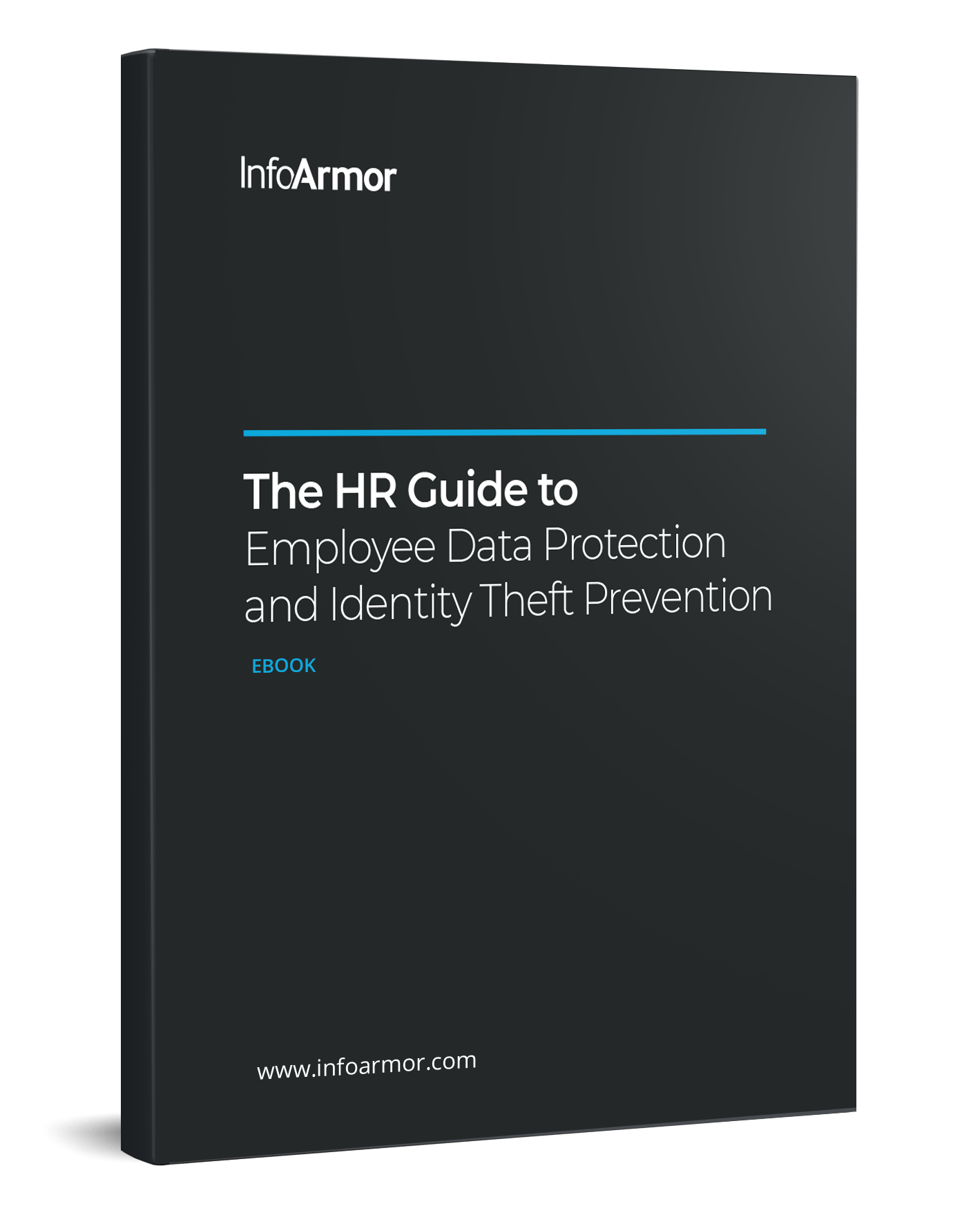 The HR Guide to Employee Data Protection and Identity Theft Prevention ebook