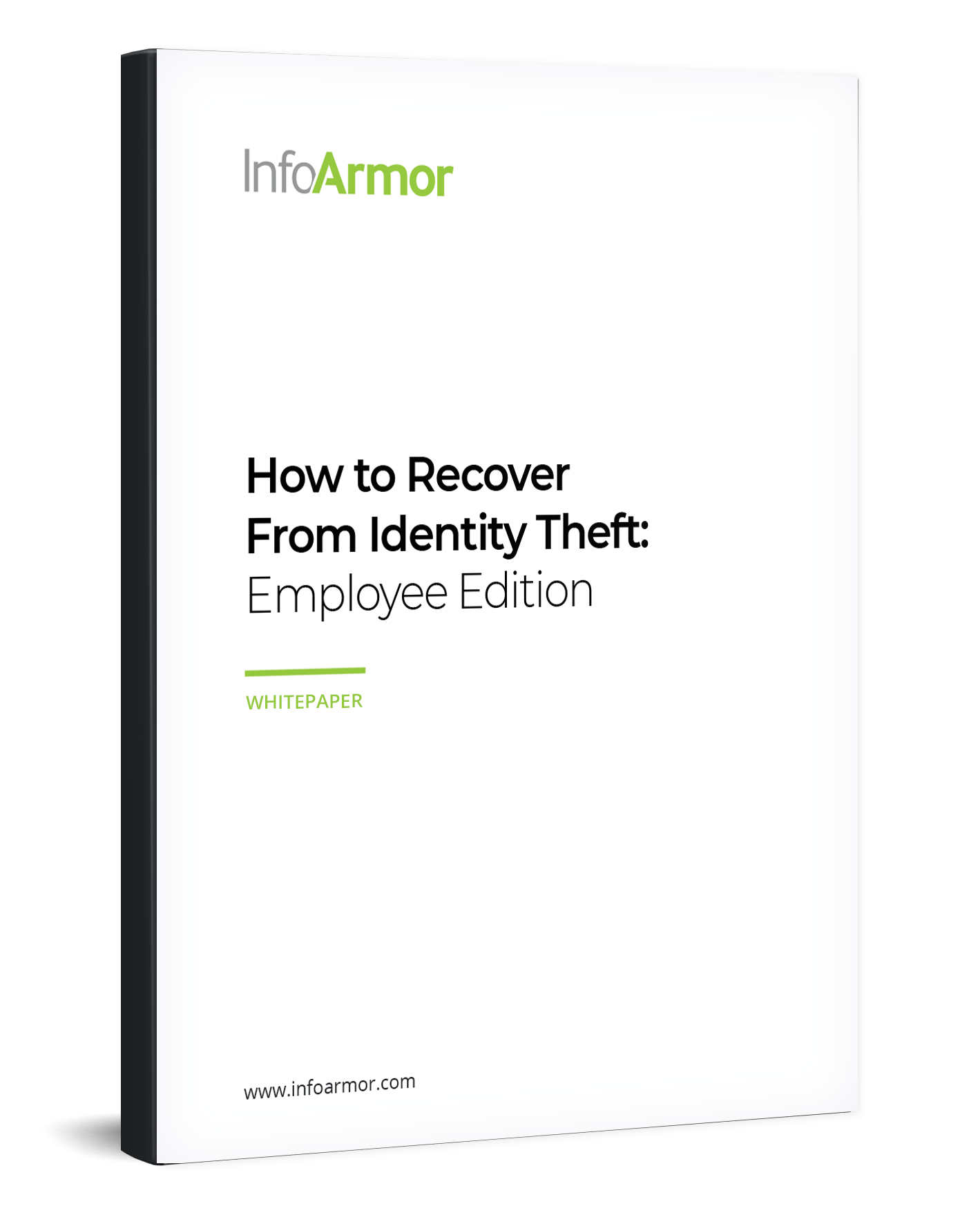 How to Recover From Identity Theft: Employee Edition ebook